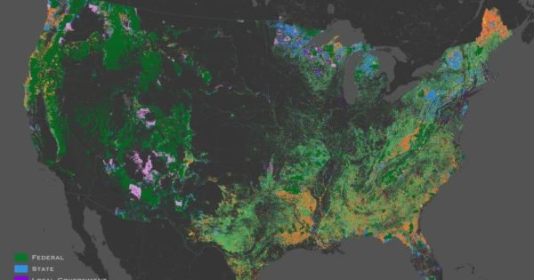 Forest Ownership In The United States